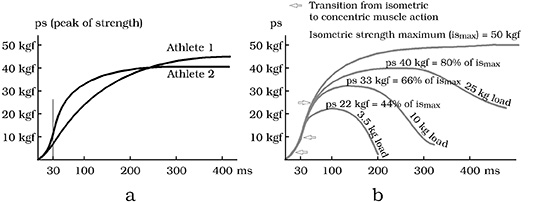 Strength curves for different athletes and for various weights (Tidow 1990)